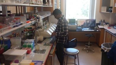 Arjun contemplating plates, 2015