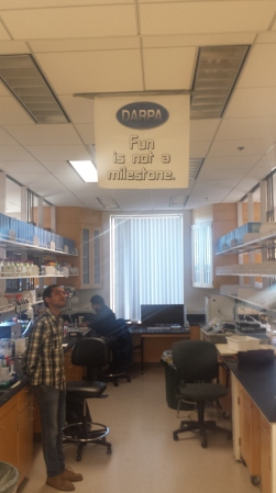 Alex looks at a banner Rishi had printed for Alex's project, 2015